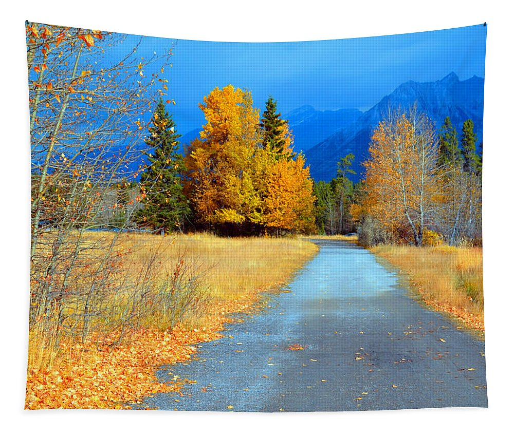Canmore Tapestry featuring the photograph Autumn Perspective by Tara Turner