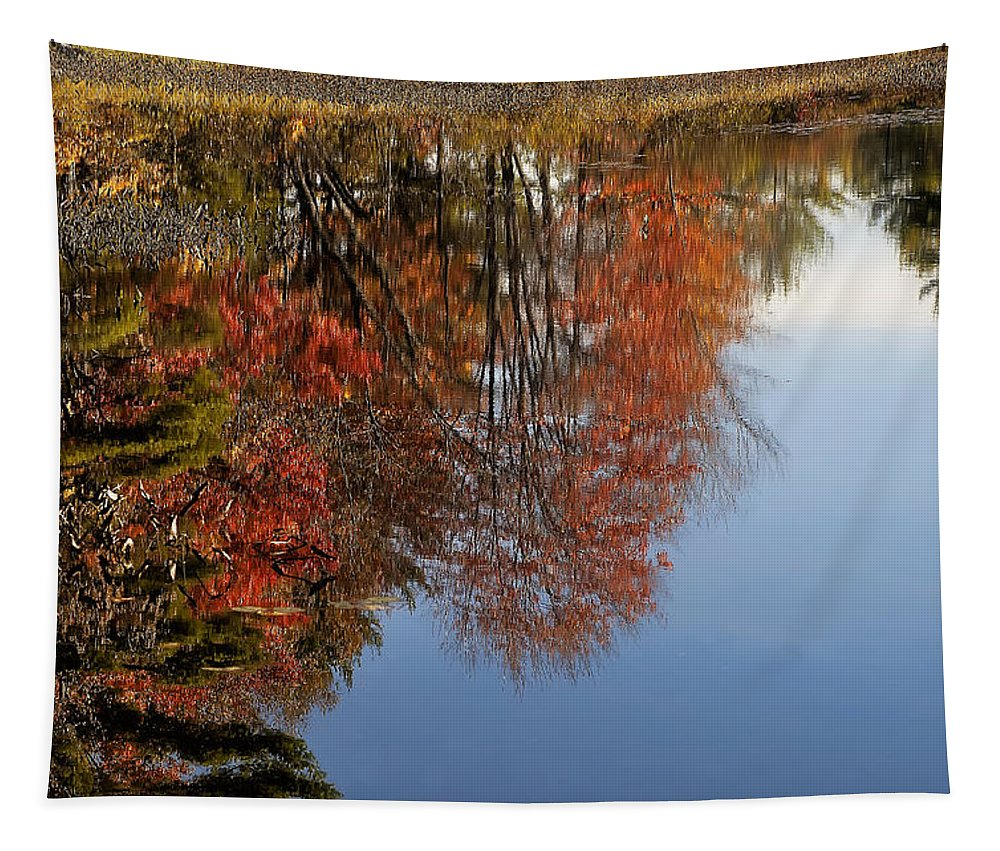 Autumn Tapestry featuring the photograph Autumn Reflections by Mary Lane