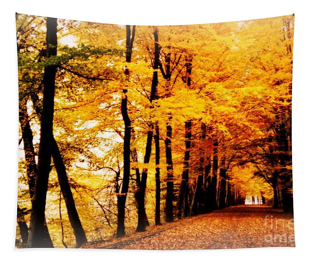 Autumn Tapestry featuring the photograph Autumn Walk In Belgium by Carol Groenen