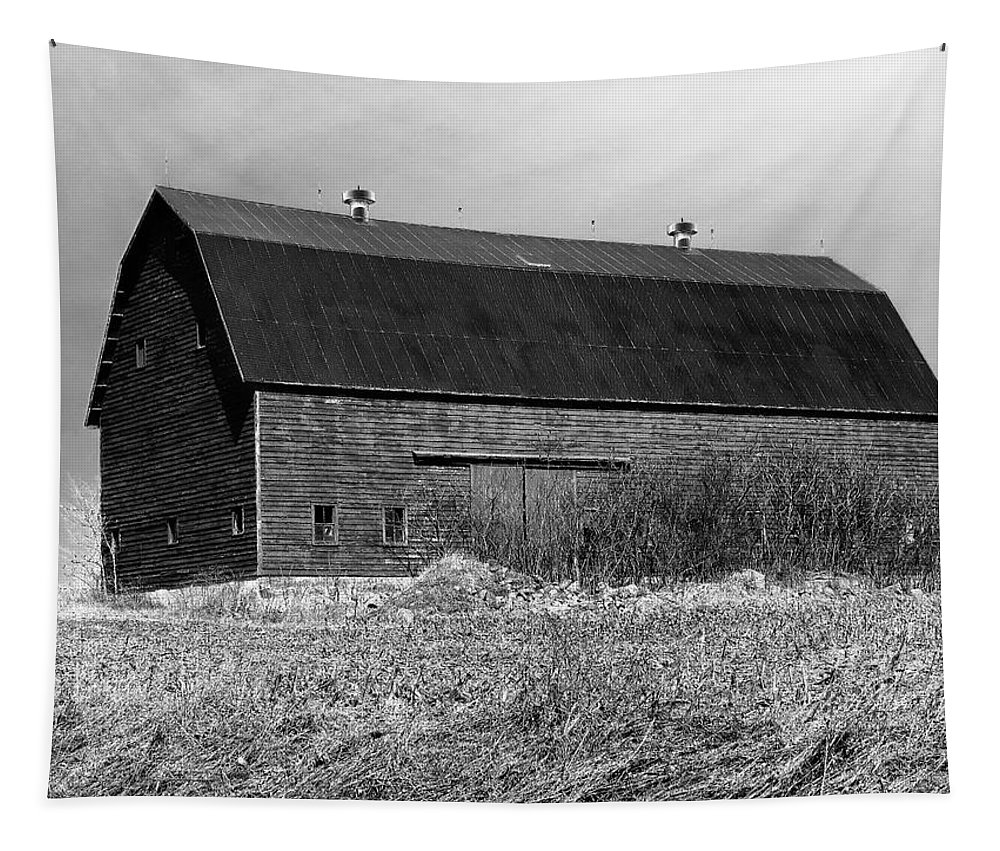 Barn Tapestry featuring the photograph Barn by Mary Lane