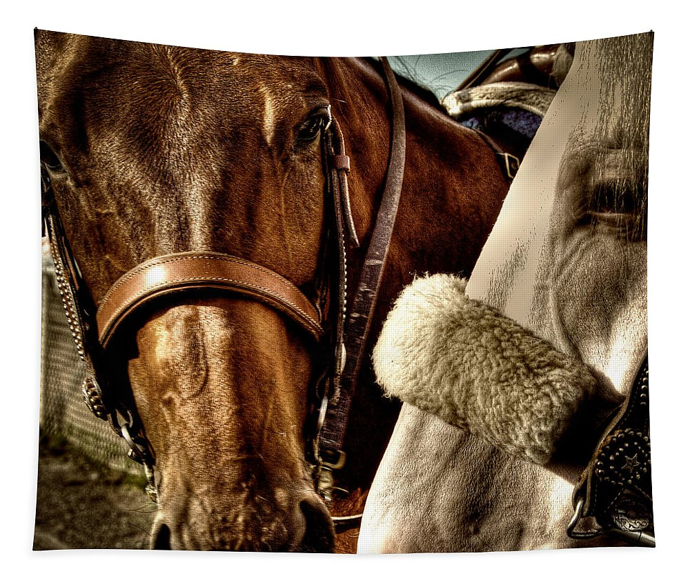 Horses Tapestry featuring the photograph Best Of Friends by David Patterson