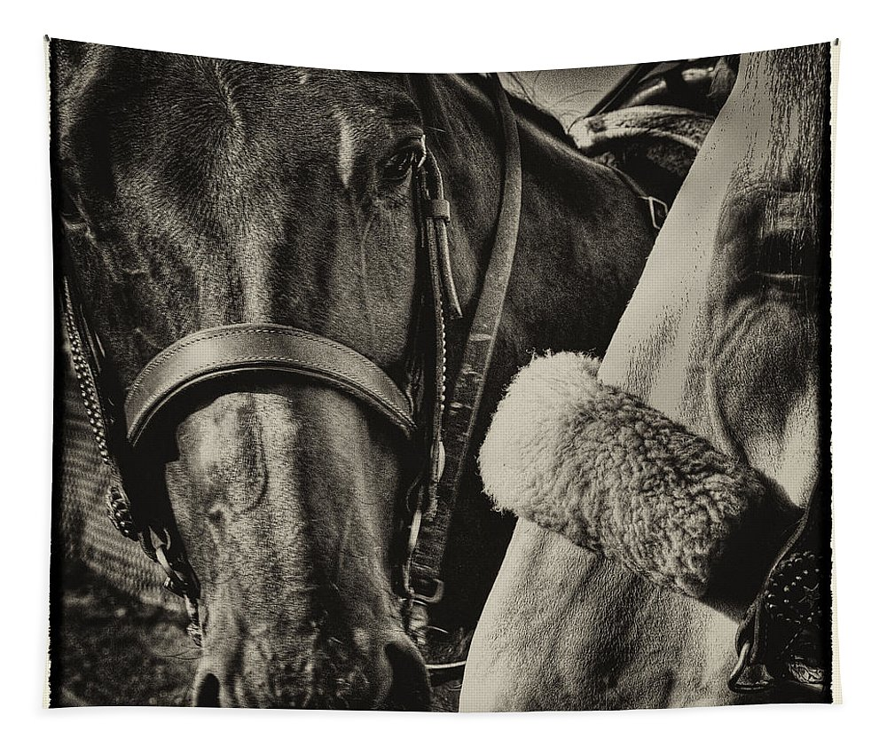 Horses Tapestry featuring the photograph Best Of Friends II by David Patterson