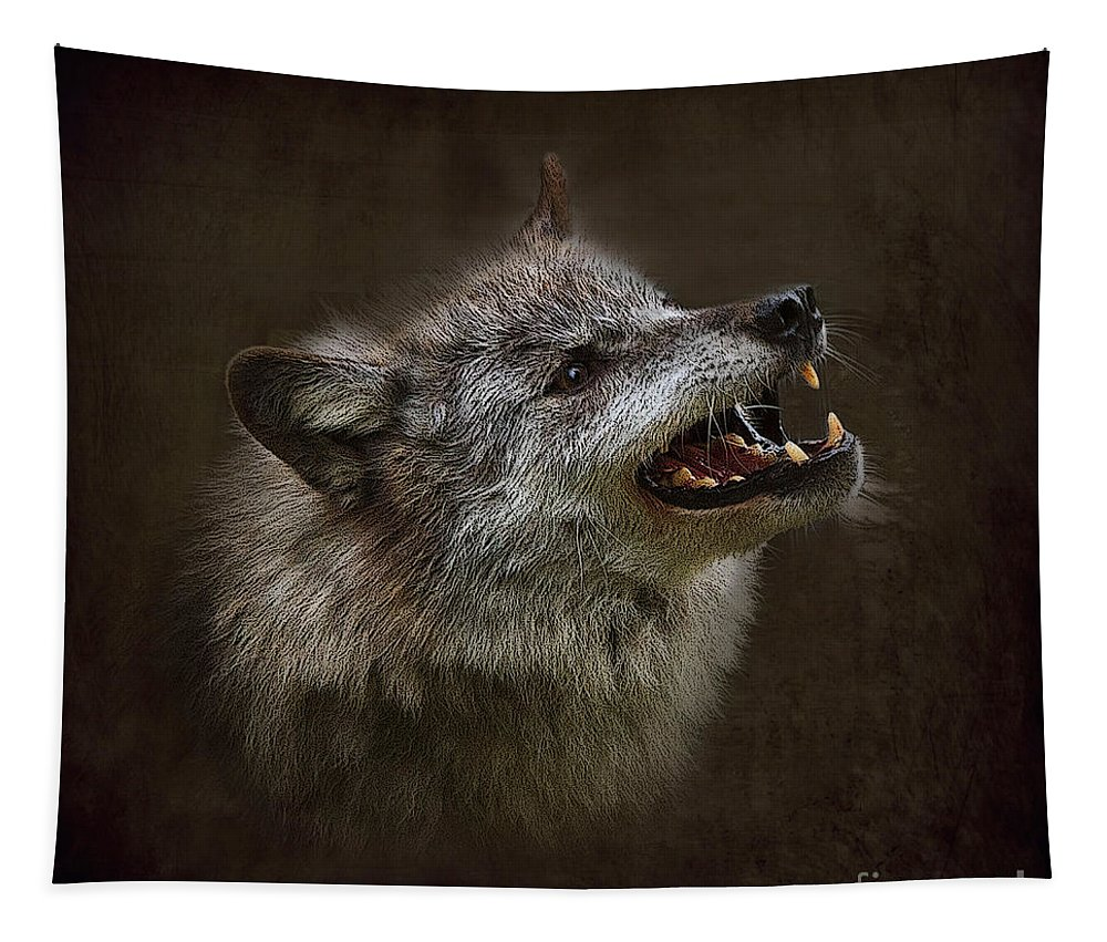 Wolf Tapestry featuring the photograph Big Bad Wolf by Louise Heusinkveld