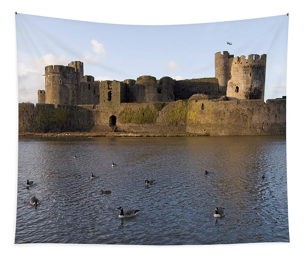 View Tapestry featuring the photograph Birds In The Moat by Mary Lane