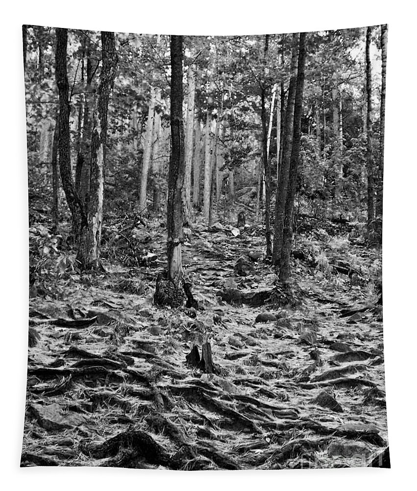 Photo Tapestry featuring the photograph Black And White Forest by Phil Perkins