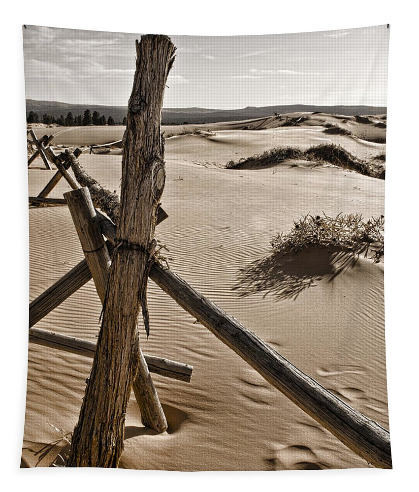 Coral Pink Sand Dunes Tapestry featuring the photograph Bleak by Heather Applegate