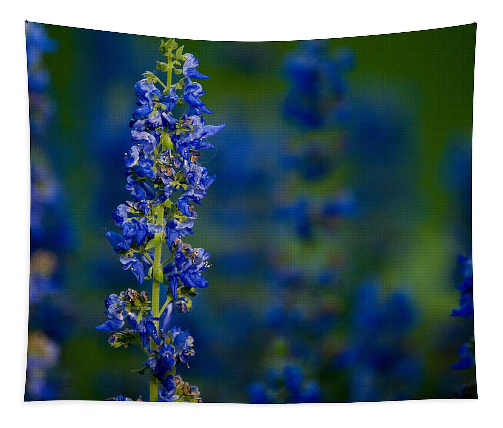 Flower Tapestry featuring the photograph Blue Bunny by Trish Tritz