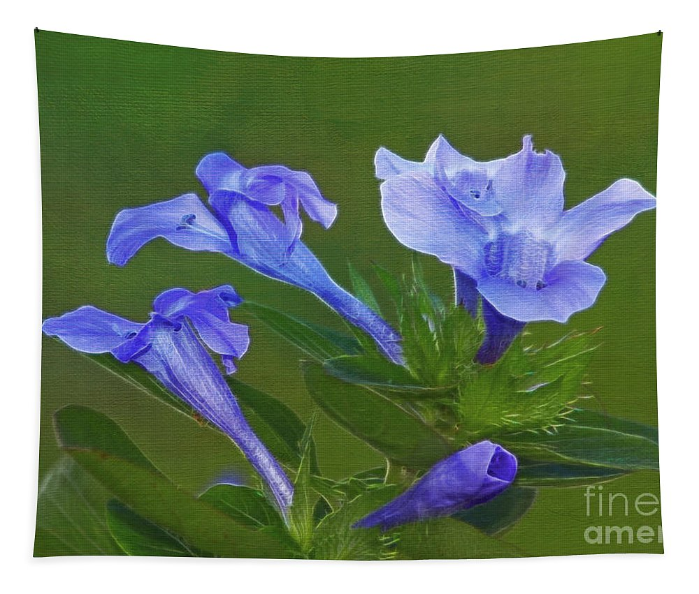 Flowers Tapestry featuring the photograph Blue On Green by Deborah Benoit