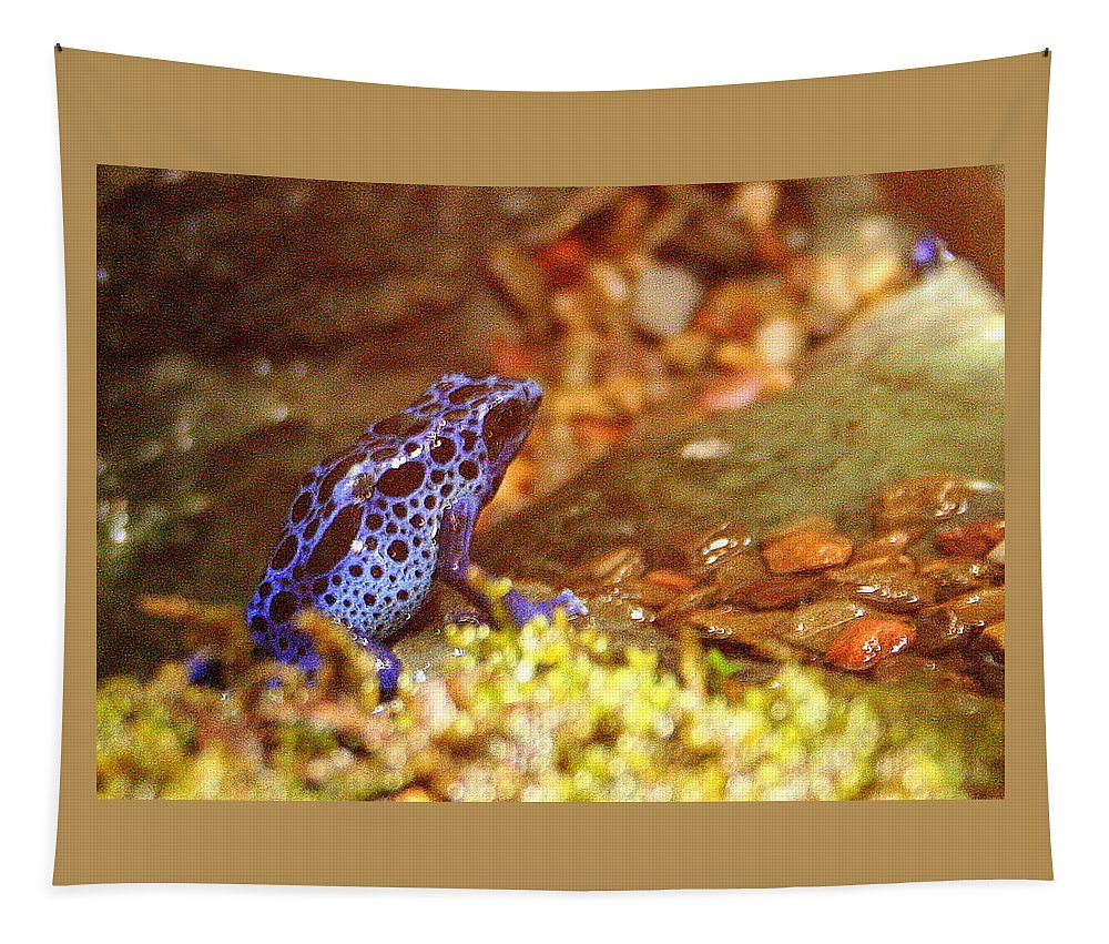 Blue Poison Dart Frog Tapestry featuring the photograph Blue Poison Dart Frog by Laurel Talabere