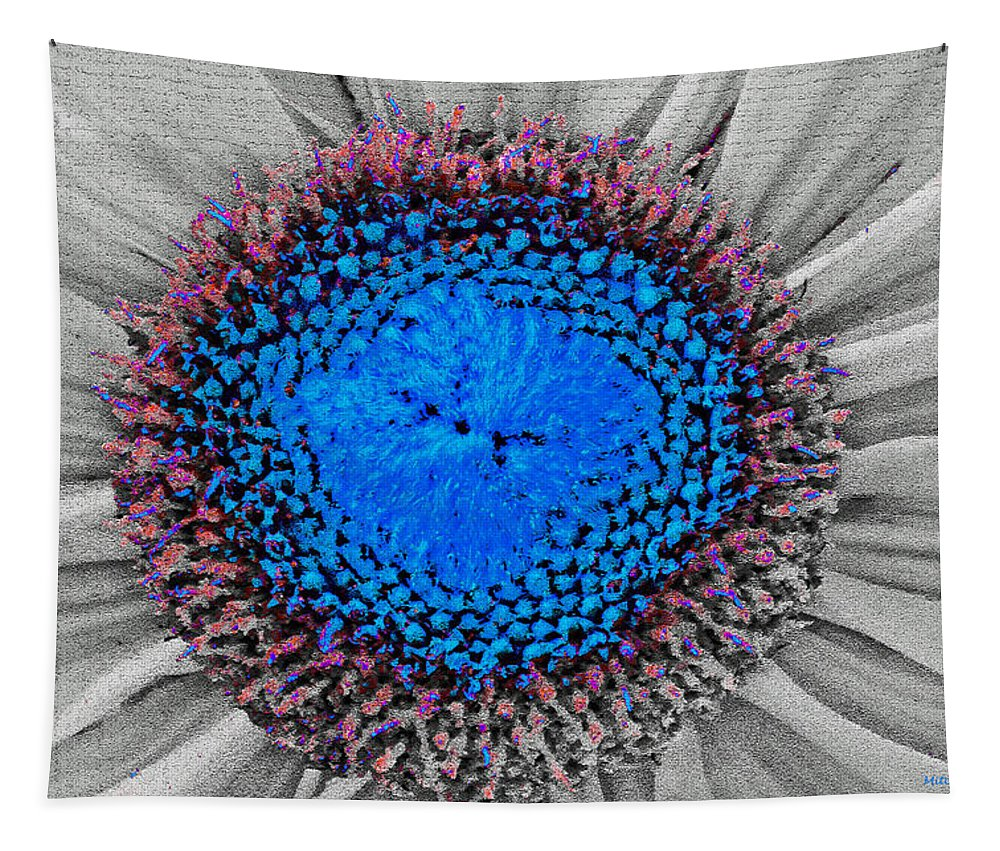 Blue Spot Tapestry featuring the photograph Blue Spot by Mitch Shindelbower