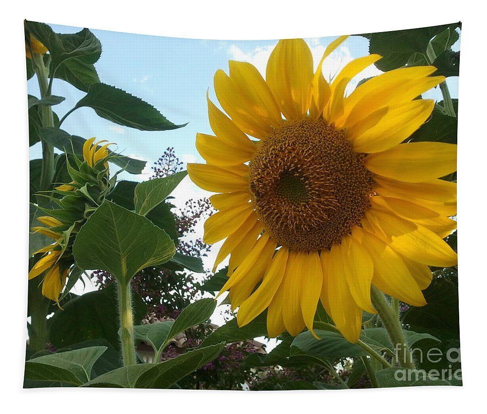 Sunflower Tapestry featuring the photograph Bright Day by Yenni Harrison