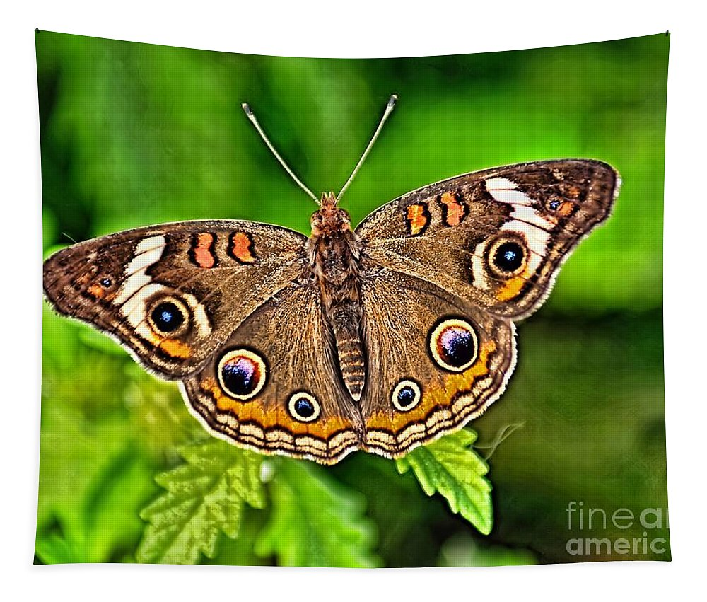 Bug Tapestry featuring the photograph Buckeye Butterfly by Nick Zelinsky