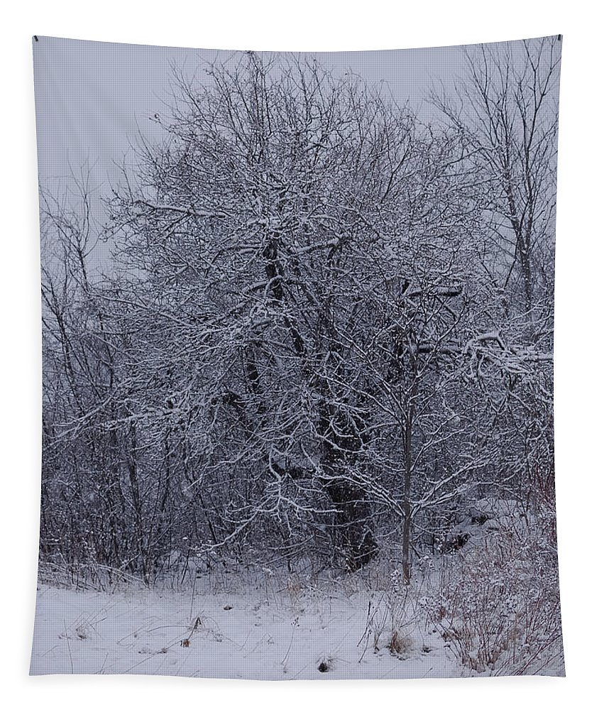 Winter Landscape Tapestry featuring the photograph By The Old Well by Susan Capuano