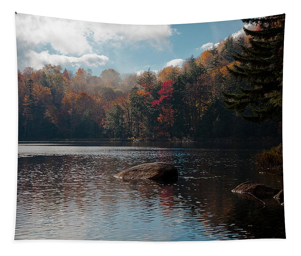 Adirondack's Tapestry featuring the photograph Cary Lake In The Adirondacks by David Patterson
