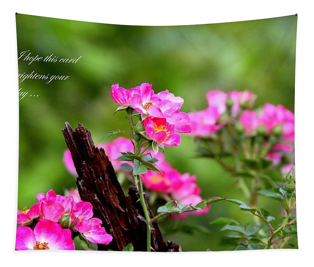 Flower Tapestry featuring the photograph Cherokee Rose Card - Flower by Travis Truelove