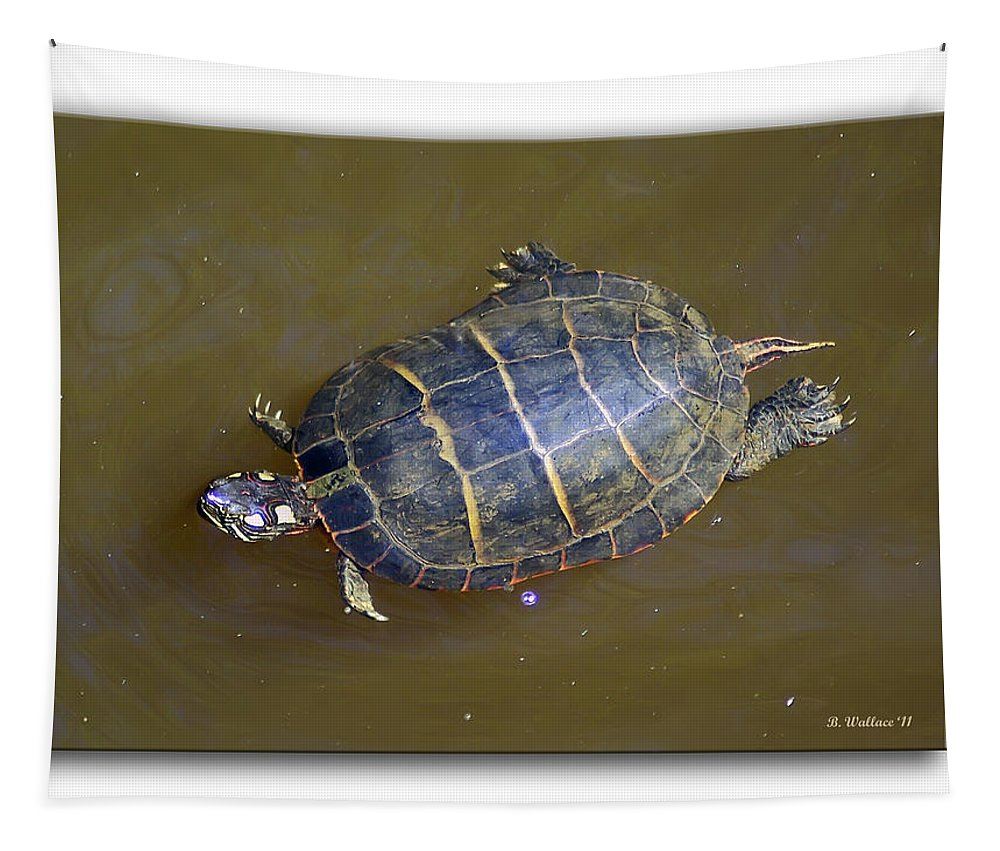 2d Tapestry featuring the photograph Chester River Turtle by Brian Wallace