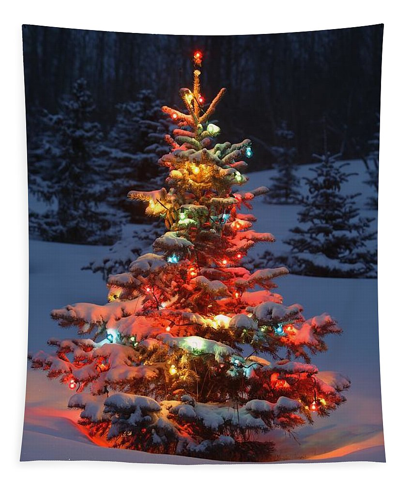 Christmas Tree With Lights Outdoors In Tapestry