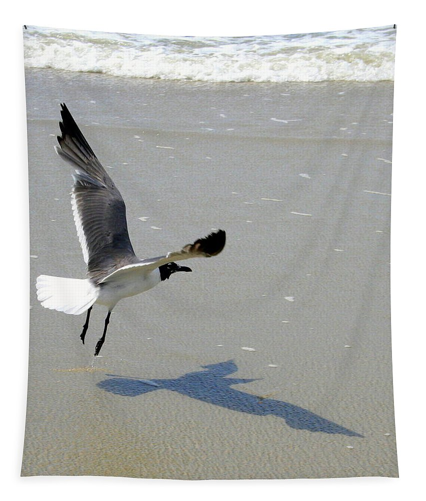 Sea Tapestry featuring the photograph Coming In For A Landing by Laurel Talabere