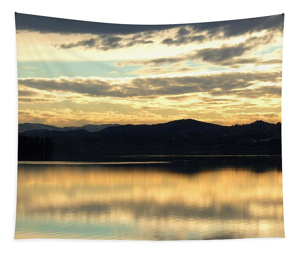 Copper Sky Tapestry featuring the photograph Copper Sky And Reflections by Will Borden