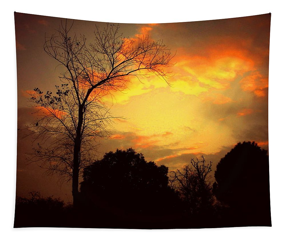 Cottonwood Tapestry featuring the photograph Cottonwood Sunset by Joyce Dickens