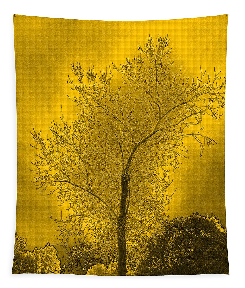 Cottonwood Tapestry featuring the photograph Cottonwood Tree April 2012 In Gold by Joyce Dickens