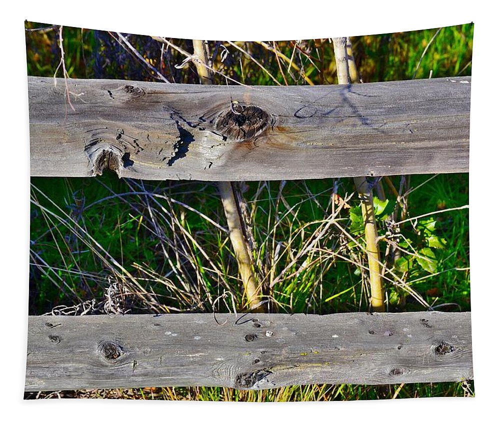 Country Fence Tapestry featuring the photograph Country Fence by Bill Owen