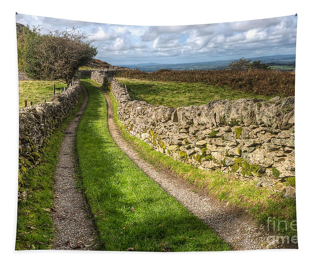 Clouds Tapestry featuring the photograph Country Lane by Adrian Evans