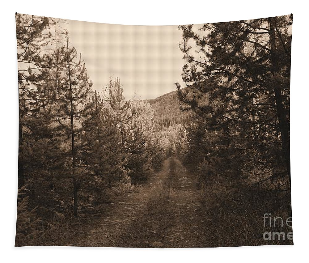 Autumn Tapestry featuring the photograph Country Road In Sepia by Jeff Swan