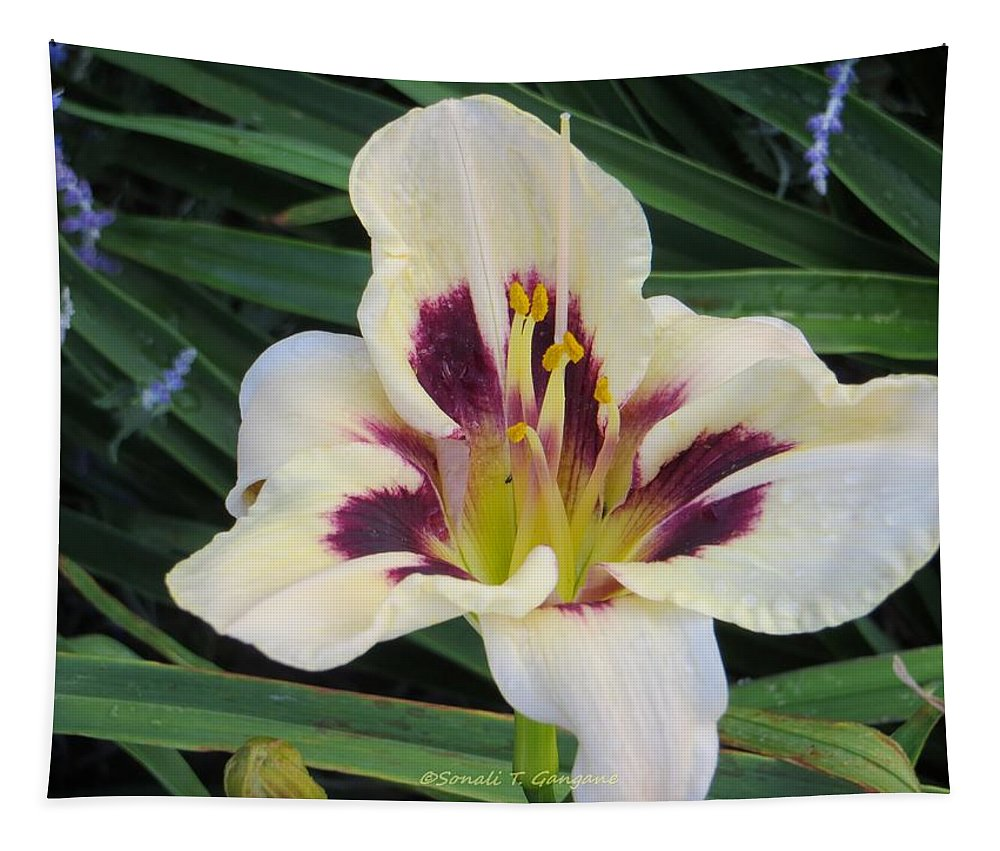 Asiatic Lily Tapestry featuring the photograph Creamy White Lily by Sonali Gangane