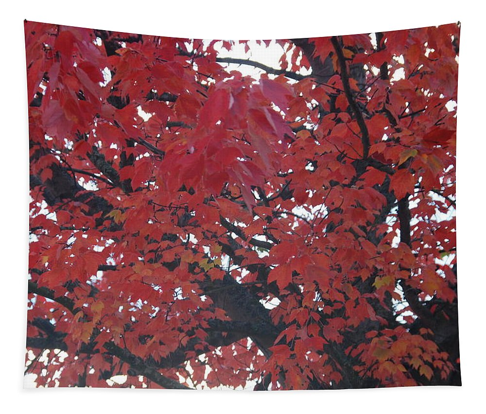 Fall Tapestry featuring the photograph Crimson Leaves by Michael Merry