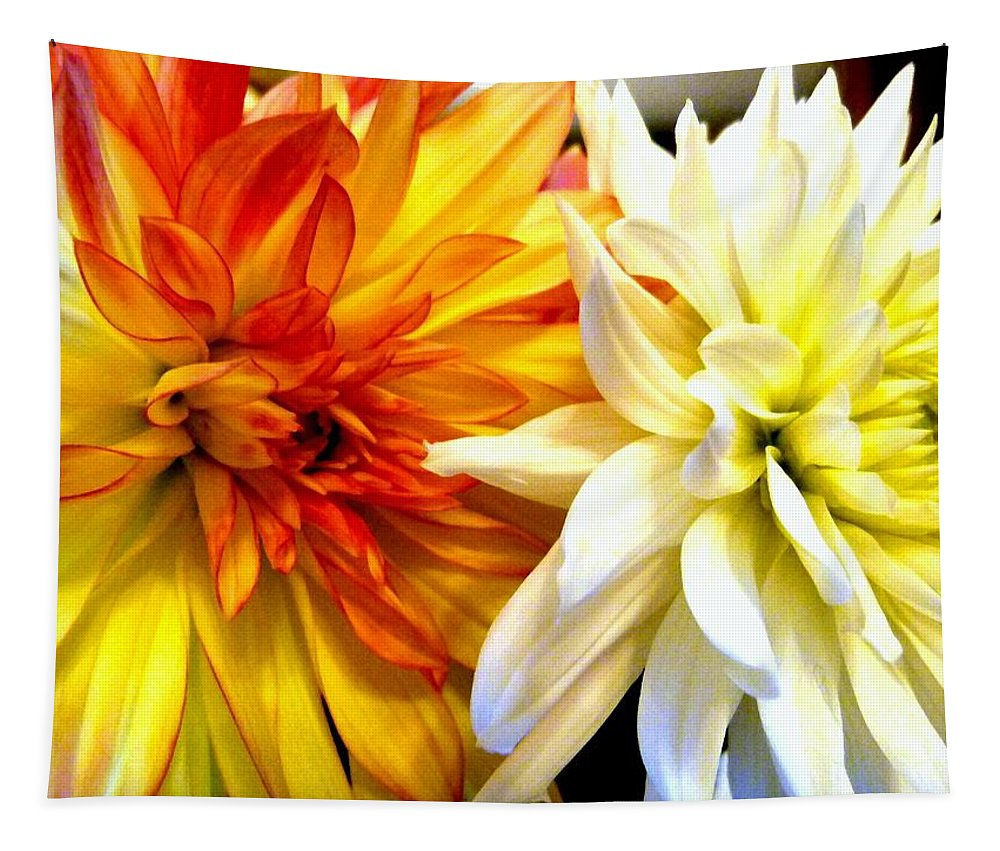 Dahlia Days Tapestry featuring the photograph Dahlia Days by Will Borden