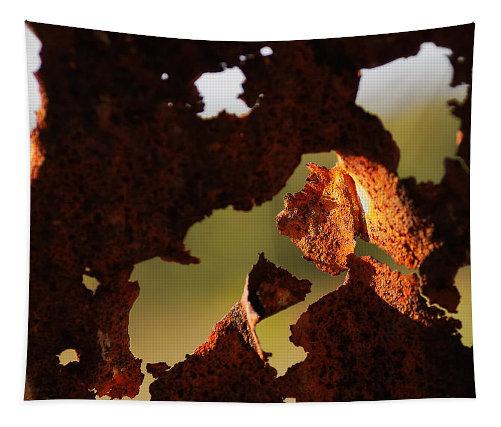 Abstract Tapestry featuring the photograph Day Break by Susan Capuano