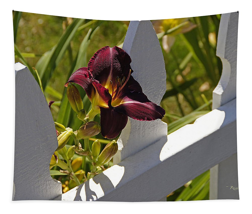 Day Lily Tapestry featuring the photograph Day Lily And White Fence II by Mick Anderson
