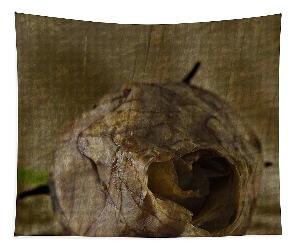 Rosebud Tapestry featuring the photograph Dead Rosebud by Steve Purnell