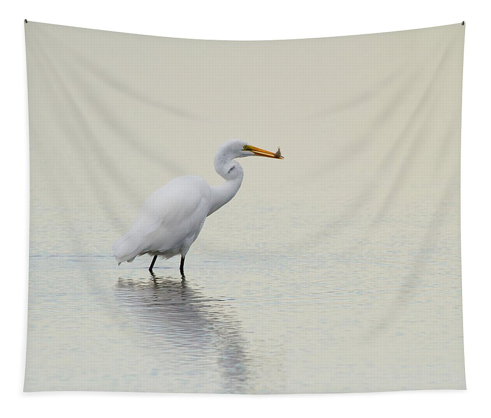 Egret Tapestry featuring the photograph Dinner To Go by Karol Livote