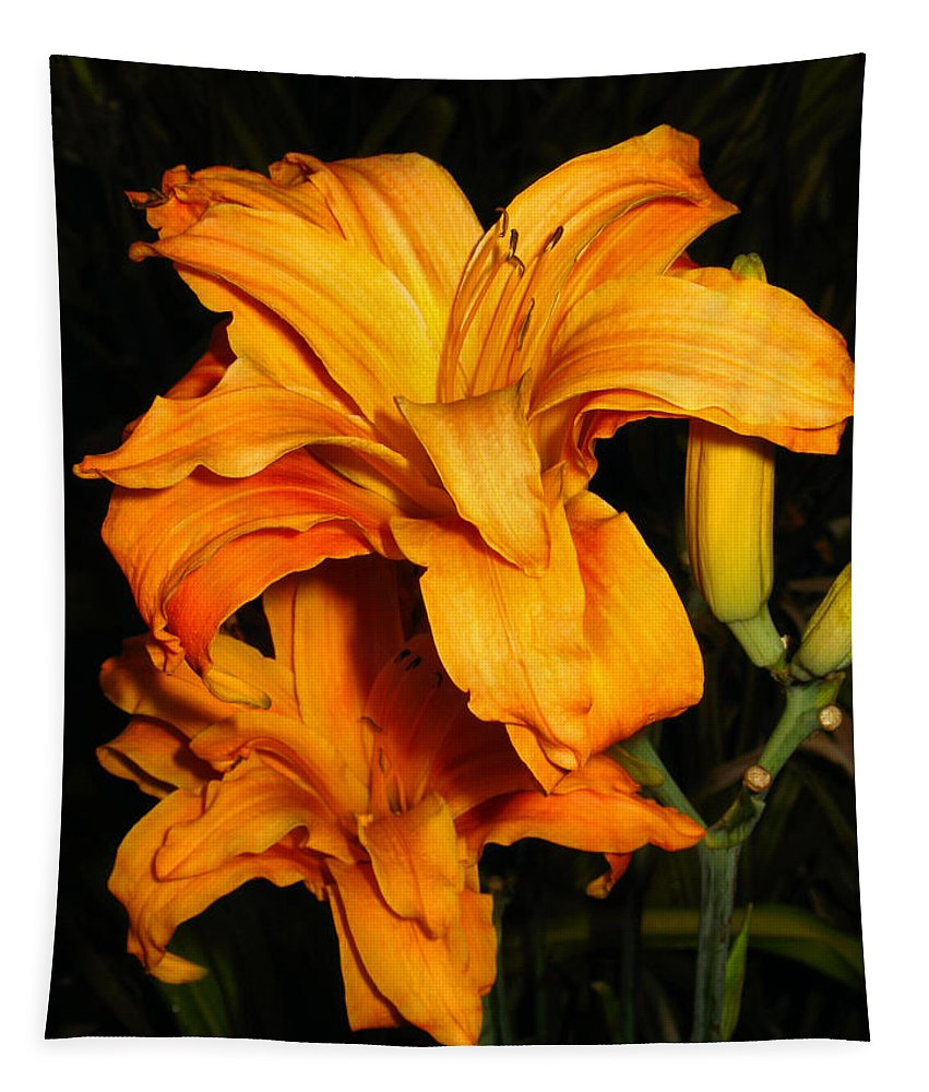 Lily Tapestry featuring the photograph Double Orange Daylilies by Joyce Dickens