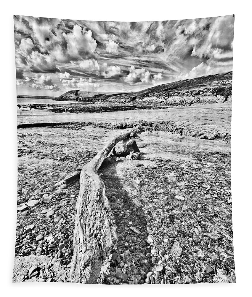 Driftwood Tapestry featuring the photograph Driftwood Sketch by Steve Purnell
