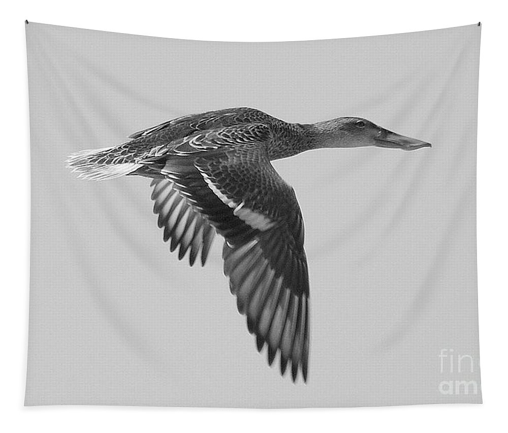 Duck Tapestry featuring the photograph Duck In Black And White by John Kolenberg