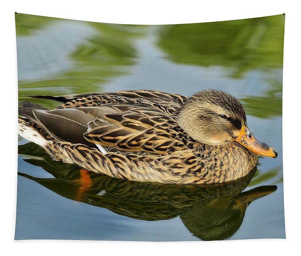 Mallard Duck Tapestry featuring the photograph Duck Soup by Saija Lehtonen