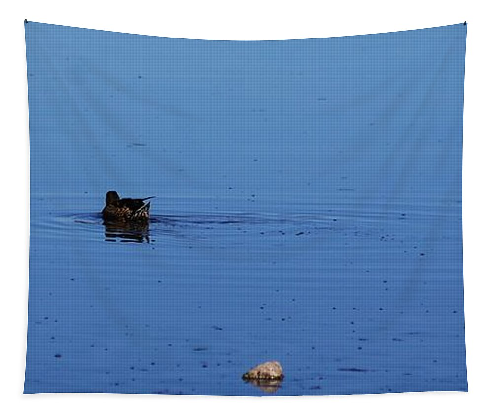 Duck Tapestry featuring the photograph Duck Swirl by John Kolenberg