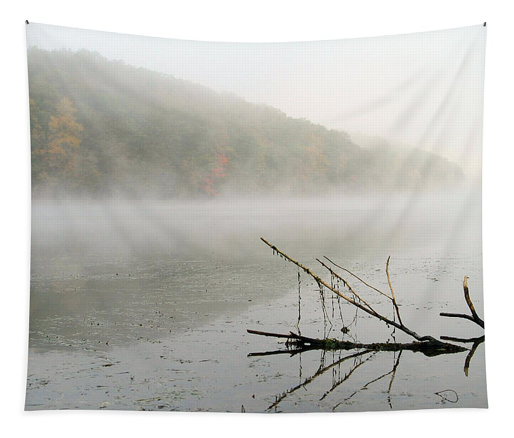 Fog Tapestry featuring the photograph Early Autumn Morn by Karol Livote