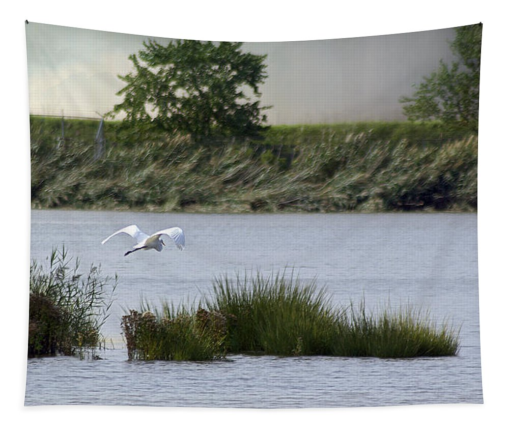 2d Tapestry featuring the photograph Egret Over Water by Brian Wallace