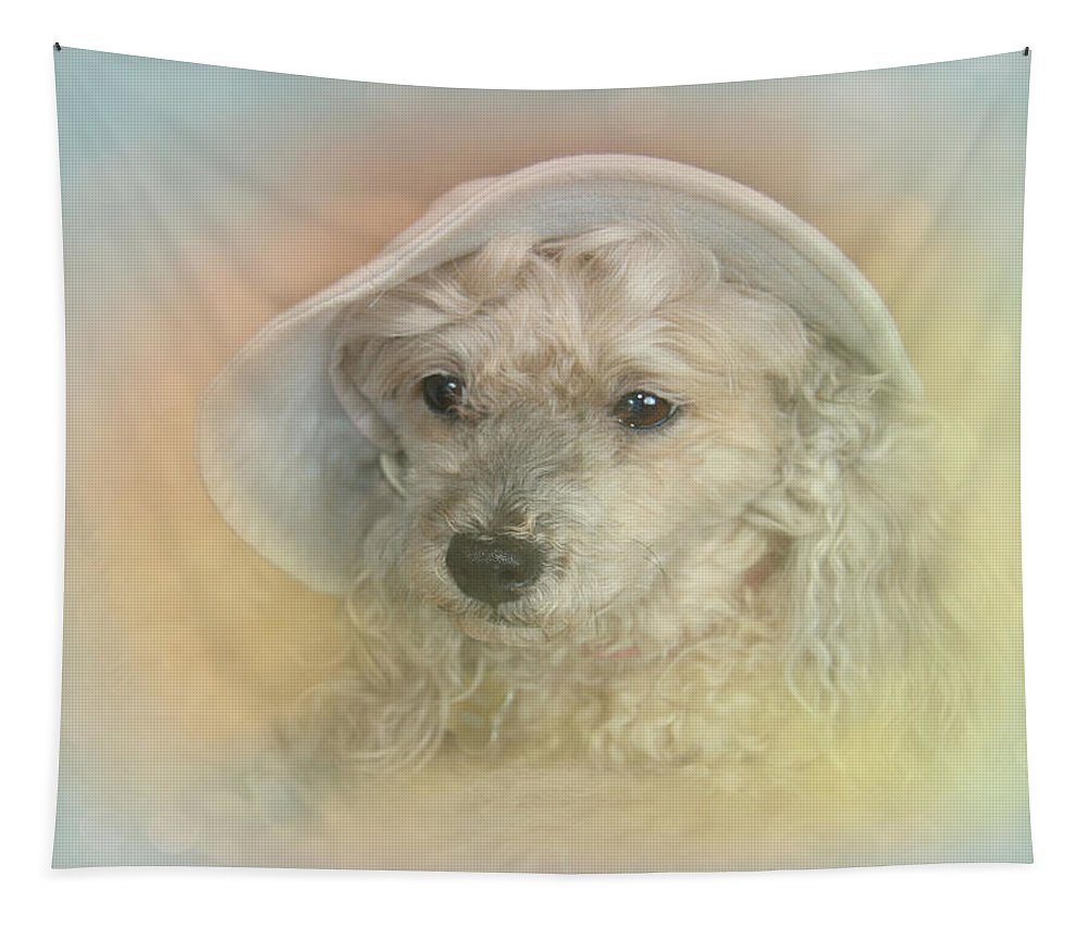 Emily Tapestry featuring the photograph Emily's Bonnet by Diana Haronis