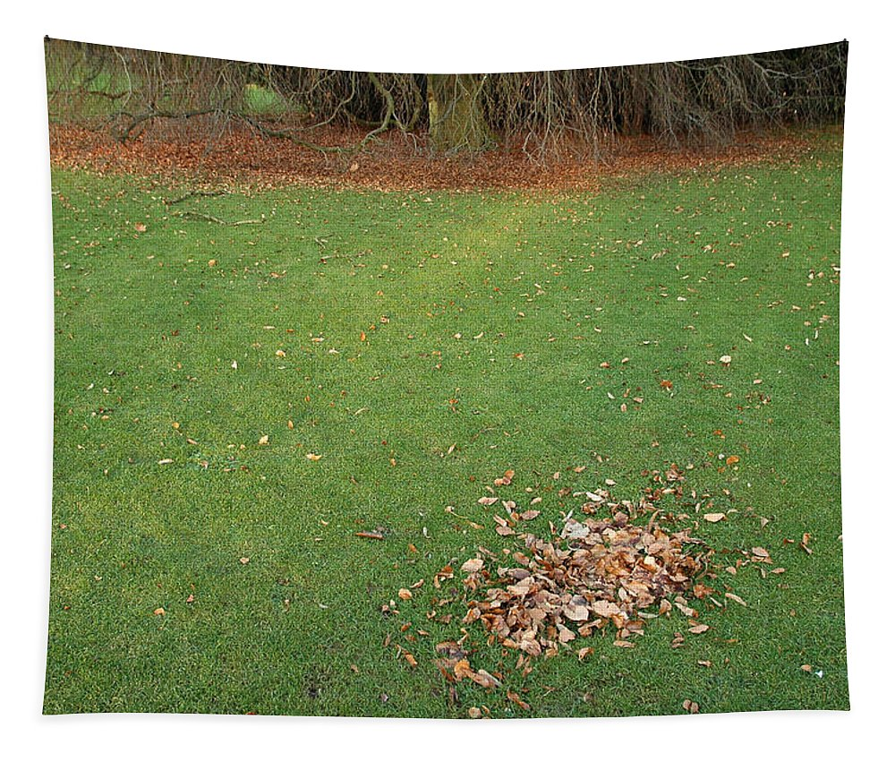Leaves Tapestry featuring the photograph Empty Lawn With A Little Heap Of Leaves Scraped Together by Matthias Hauser
