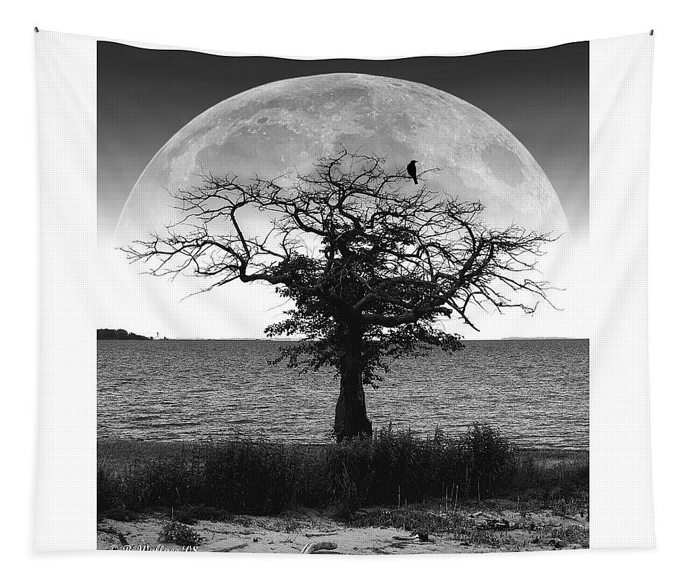 2d Tapestry featuring the photograph Enchanted Moon by Brian Wallace