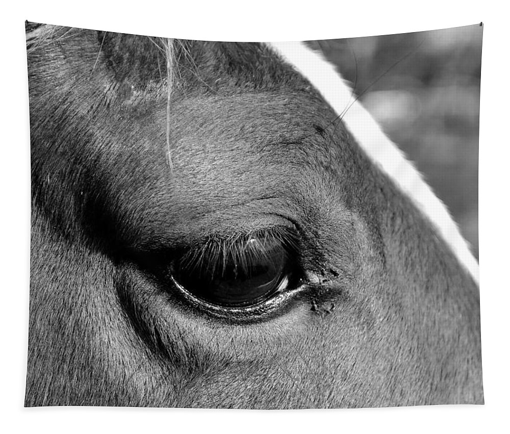 Horse Tapestry featuring the photograph Eye Of The Horse Black And White by Sandi OReilly