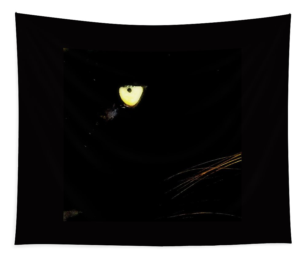 Black Panther Tapestry featuring the photograph Eye Of The Panther by Karen Wiles