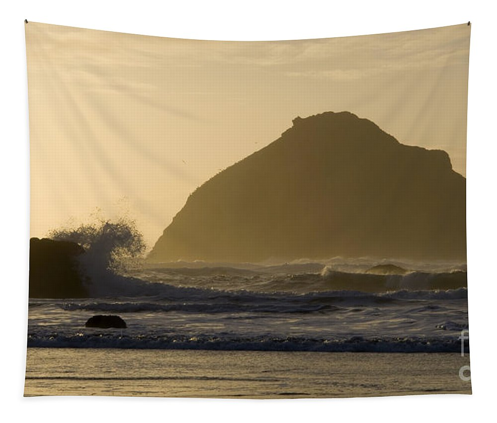Oregon Tapestry featuring the photograph Face Rock 2 by Bob Christopher