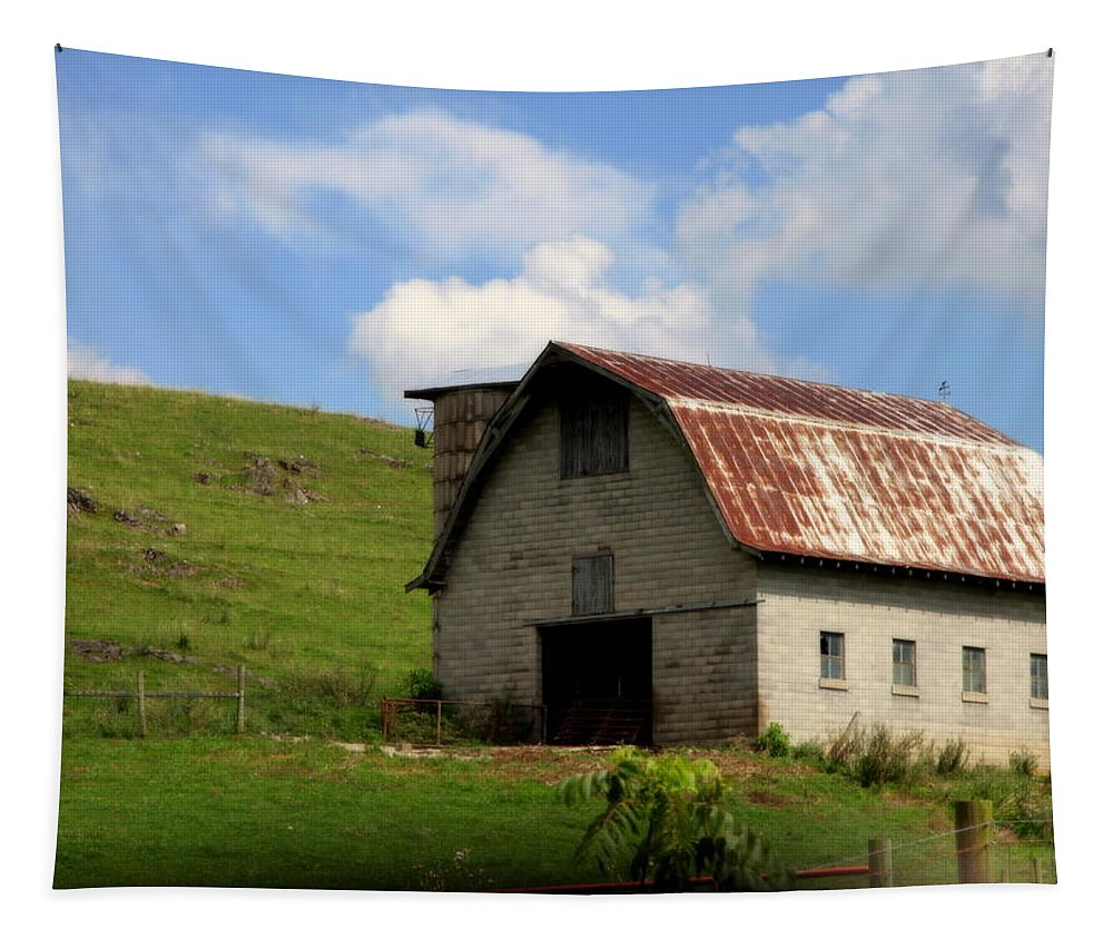 Landscapes Tapestry featuring the photograph Faded Generations by Karen Wiles