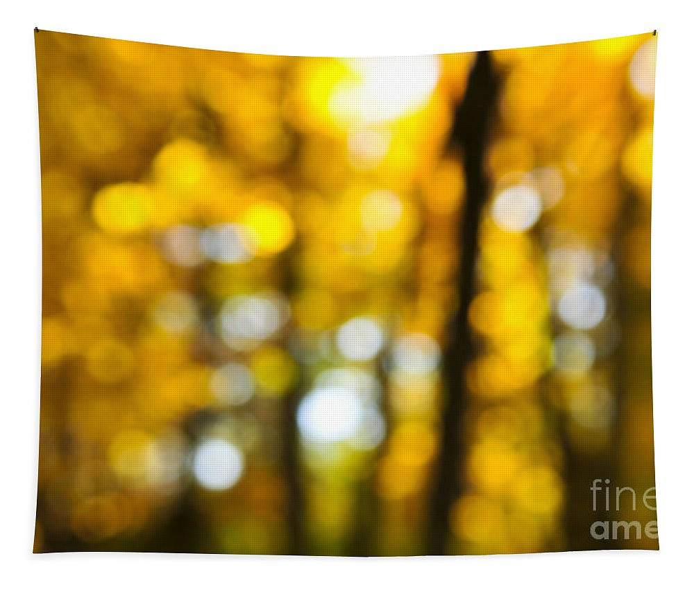 Nature Tapestry featuring the photograph Fall Forest In Sunshine by Elena Elisseeva
